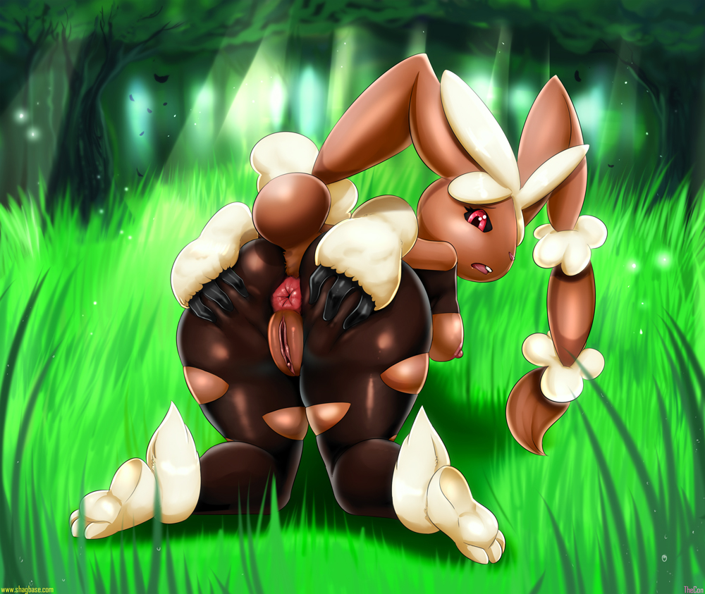 lopunny mega time le to Toothless gets hiccup pregnant fanfiction